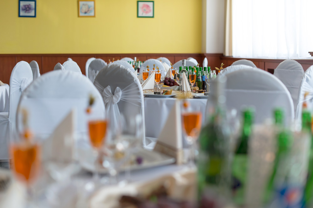 Kongresové sály vo Vranove nad Topľou - Hotel Patriot***